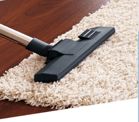 Services Domestic services Cleaning : Professional Carpet Cleaning Christchurch - Ph.No. 0800700606