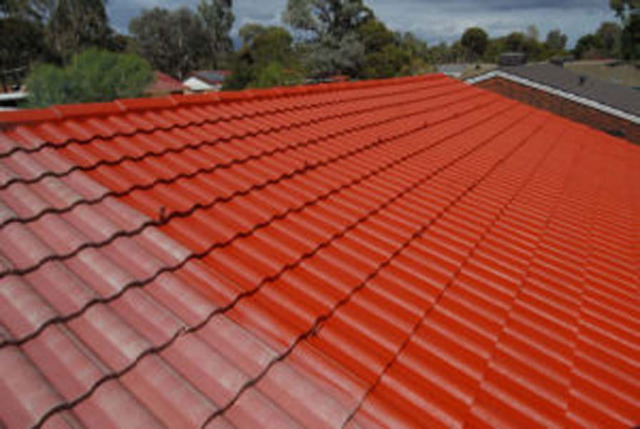 Services Building & renovation Painting : Roof Painting in Auckland - Ph.No. 0210690694