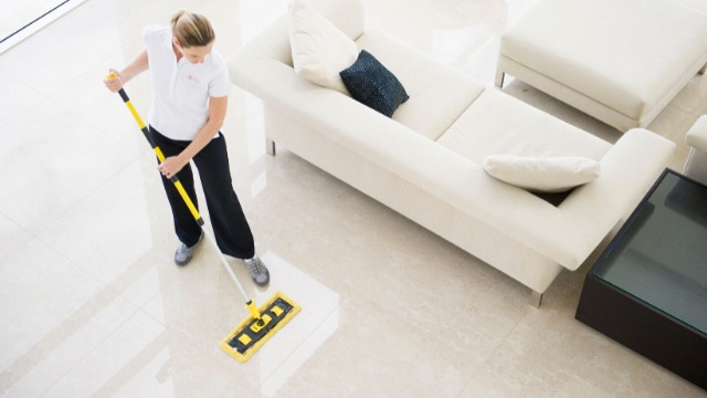 Jobs  Trades & services : Domestic Cleaners