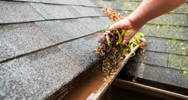 Services Domestic Services Cleaning : Gutter Fixing